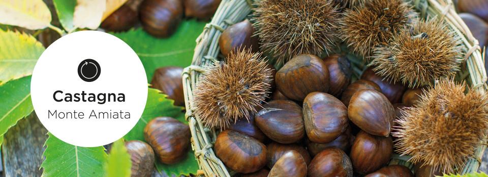 Castagna Burro Corpo Nutriente-5078
