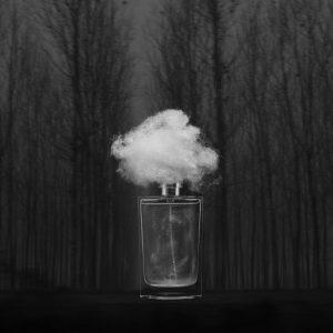 Nebbia Densa
